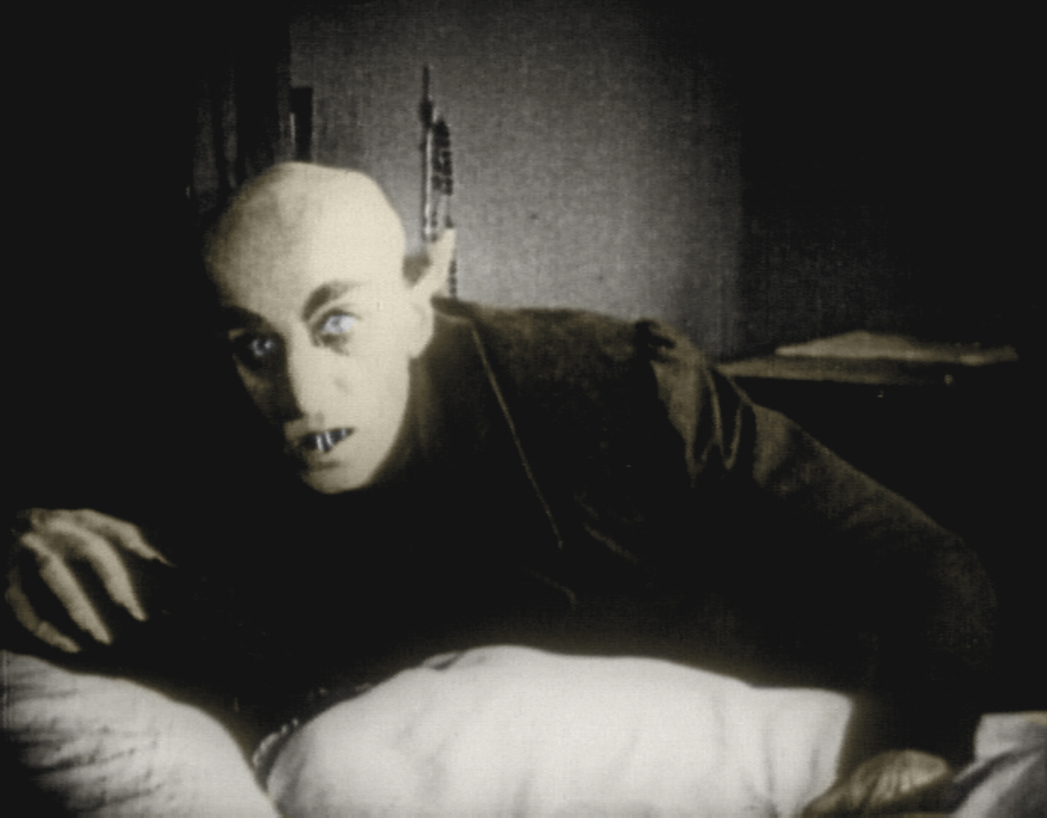 nosferatu essay Nosferatu essays: over 180,000 nosferatu essays, nosferatu term papers, nosferatu research paper, book reports 184 990 essays, term and research papers available for.