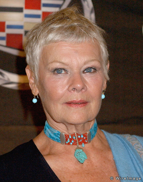 Judi Dench and why actor autobiographies are better than political memoirs | Open Page